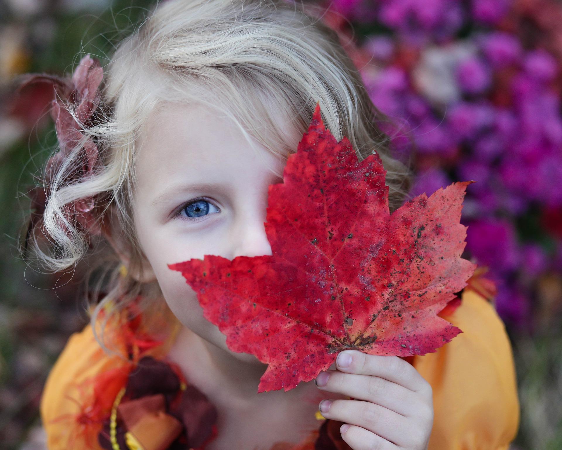 fille blonde aux yeux bleus tenant une feuille d'érable rouge
