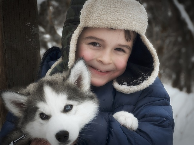 Garçon au chapeau avec un husky